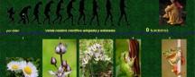 especies-encadenadas-3