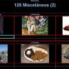 125_miscelaneos2